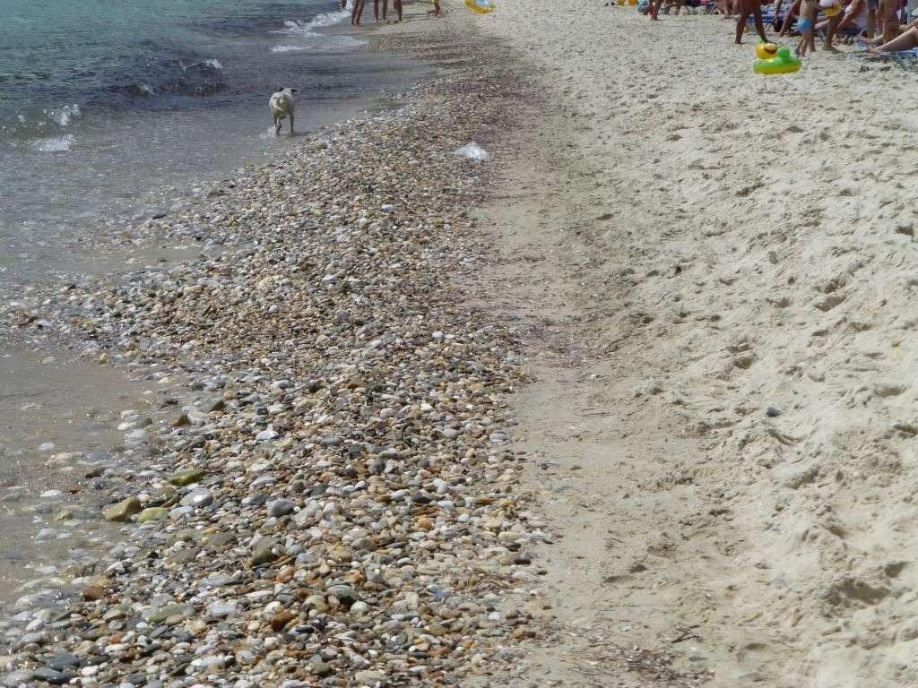 Greece, the Island of Thassos, Golden Beach walk 66510