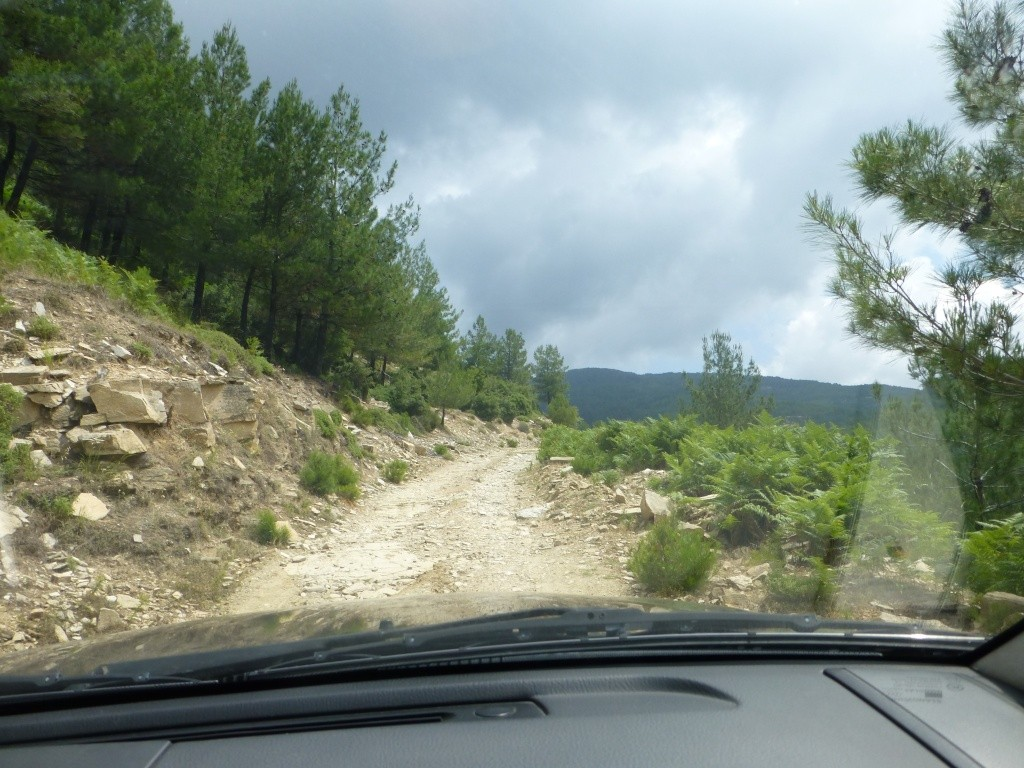 Greece, the Island of Thassos, The Ipsarion Mountain climb by 4x4 91610