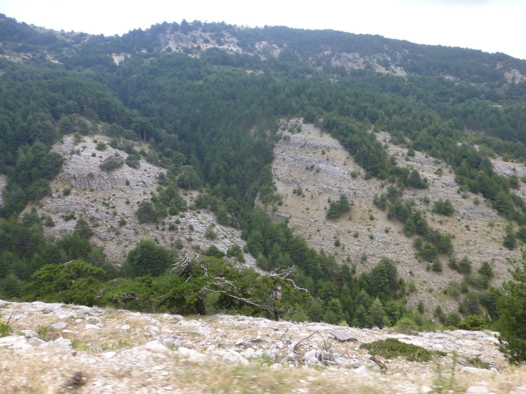 Greece, the Island of Thassos, The Ipsarion Mountain climb by 4x4 93110