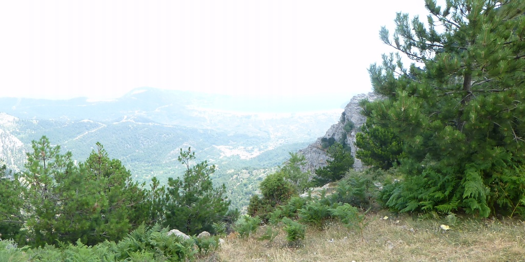 Greece, the Island of Thassos, The Ipsarion Mountain climb by 4x4 93610