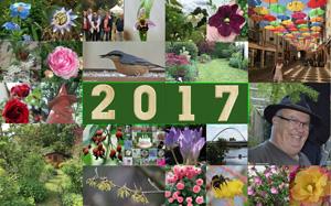 Meilleurs voeux pour 2017 201712