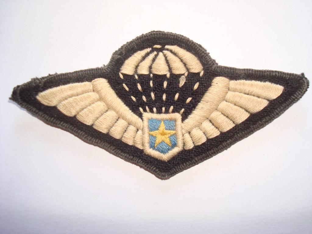 Insigne du 1er Rgt de Parachutistes d'Infanterie de Marine 01012