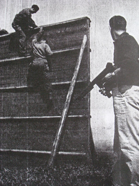 LES INSIGNES DU BATAILLON DE CHOC 1943/1963. - Page 3 Combat15
