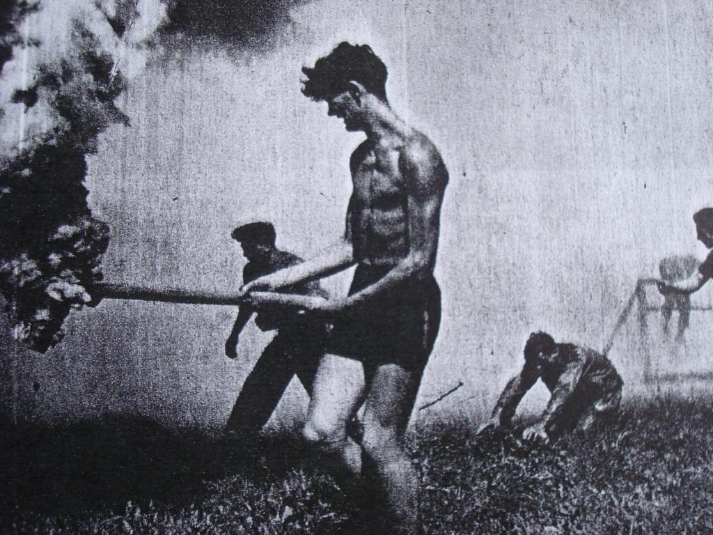 LES INSIGNES DU BATAILLON DE CHOC 1943/1963. - Page 3 Combat16