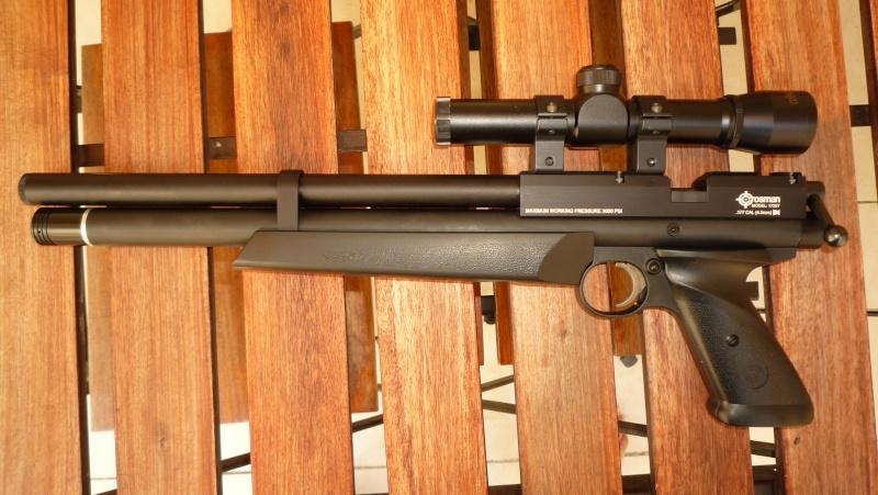 Les armes de Harry P1050312