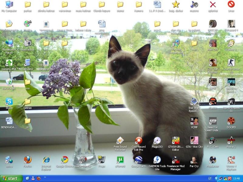 Desktop Deskto11