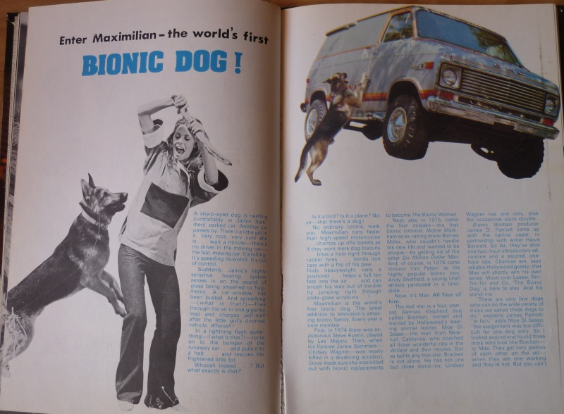 Max le chien bionique P1200314