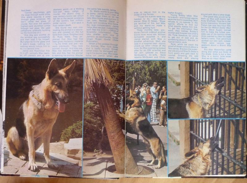 Max le chien bionique P1200315