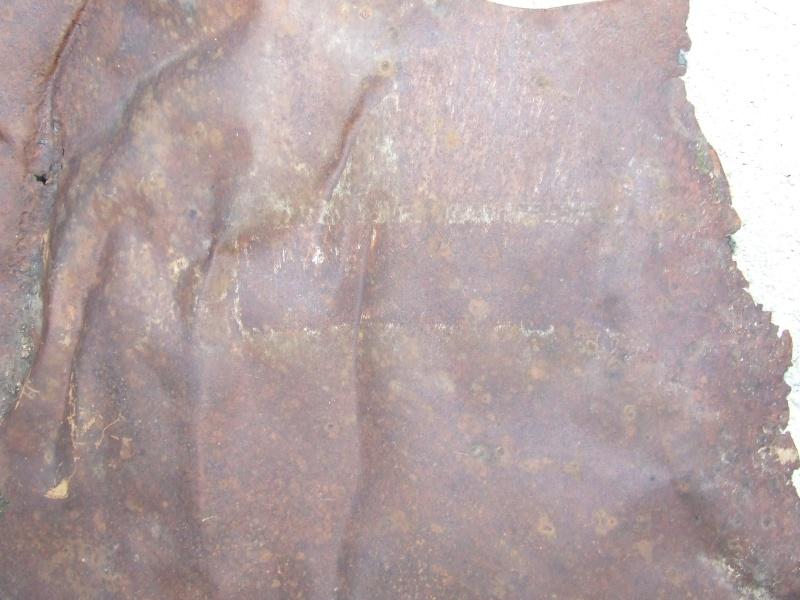 un bout de ferraille dans les bois des Riceys Dscf4714
