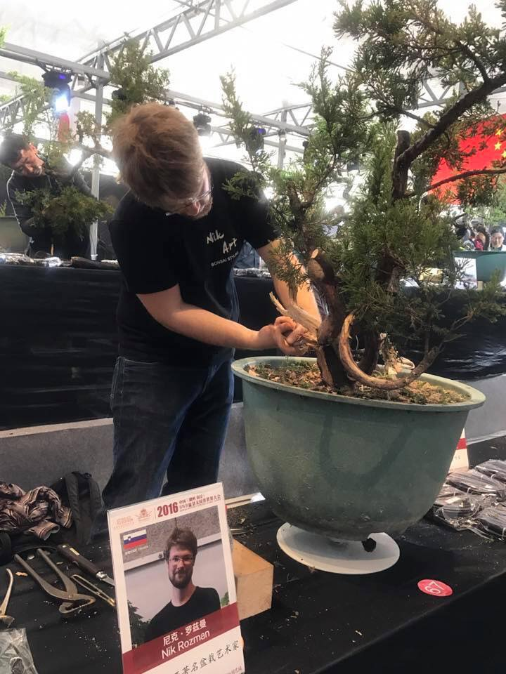 Bonsai Without Borders convention 15356710