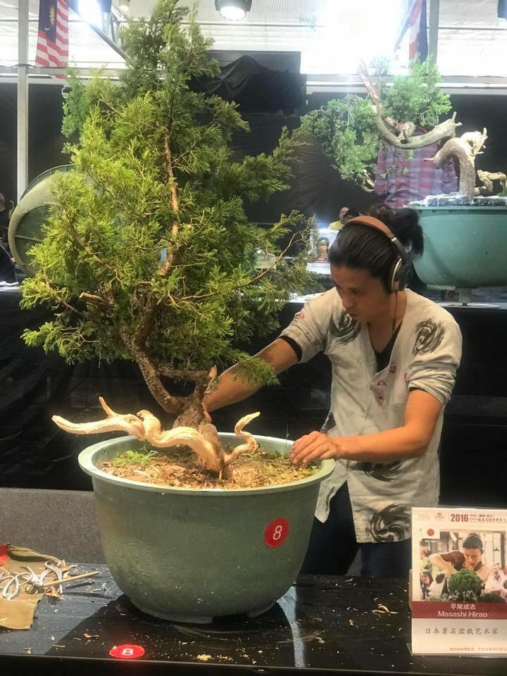 Bonsai Without Borders convention 15401110