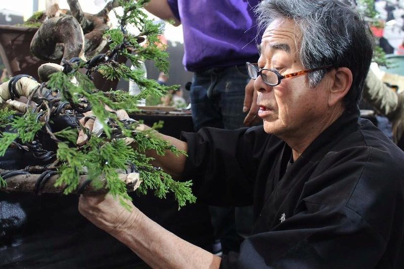 Bonsai Without Borders convention 15578610