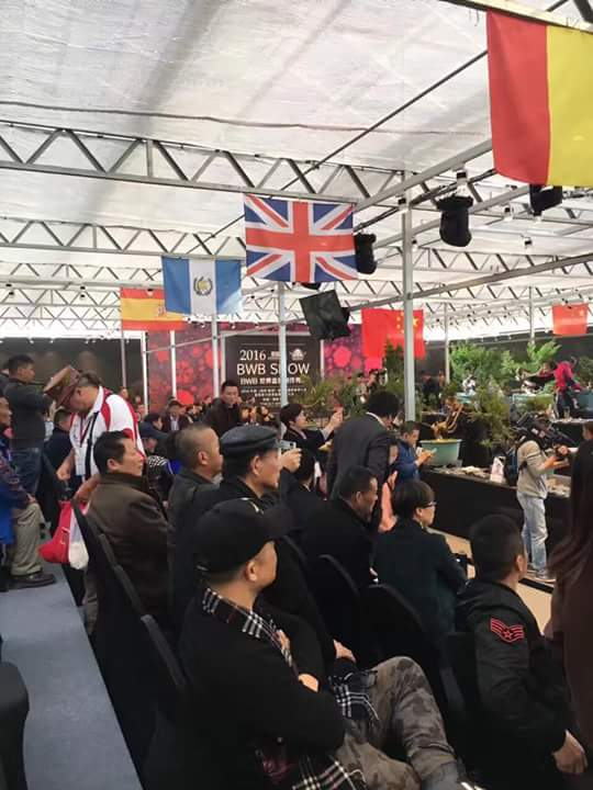 Bonsai Without Borders convention 15781310