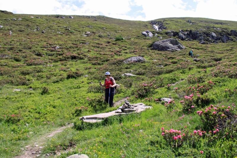 Sainte-Foy - Col du Mont - Col de Montséti Img_7413