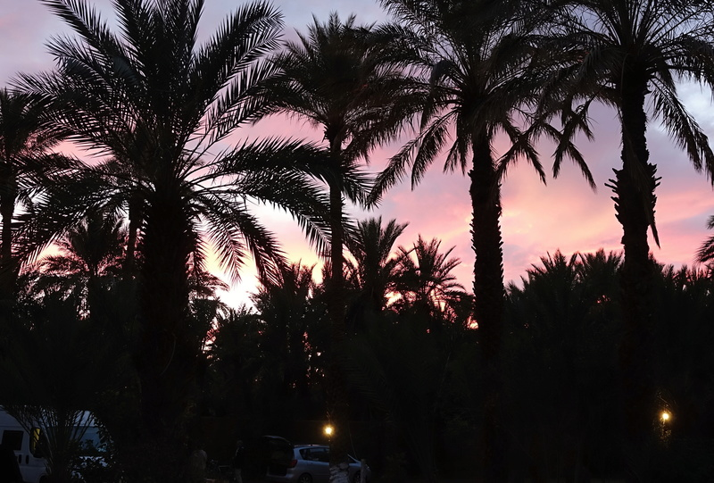 [Maroc Camp/Dernières nouvelles] Fréquentation - Page 5 Dsc00310