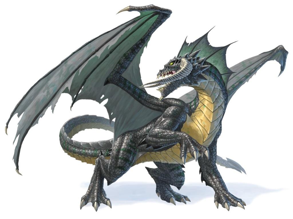 L'éveil des Seigneurs des runes - résumés - Page 2 Dragon10