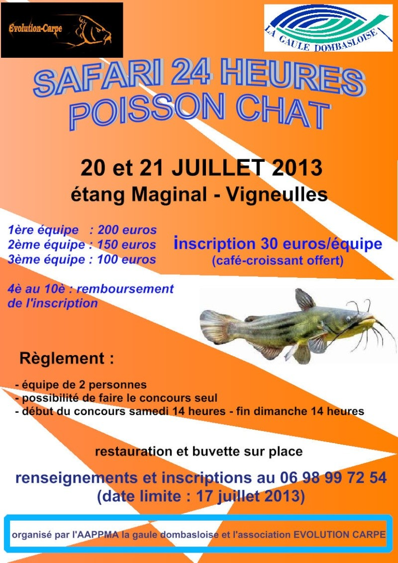 concours 24 heures poisson chat Affich11