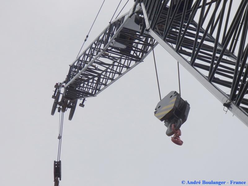 Les grues de WILLI NAESSENS (Belgique) P1080238