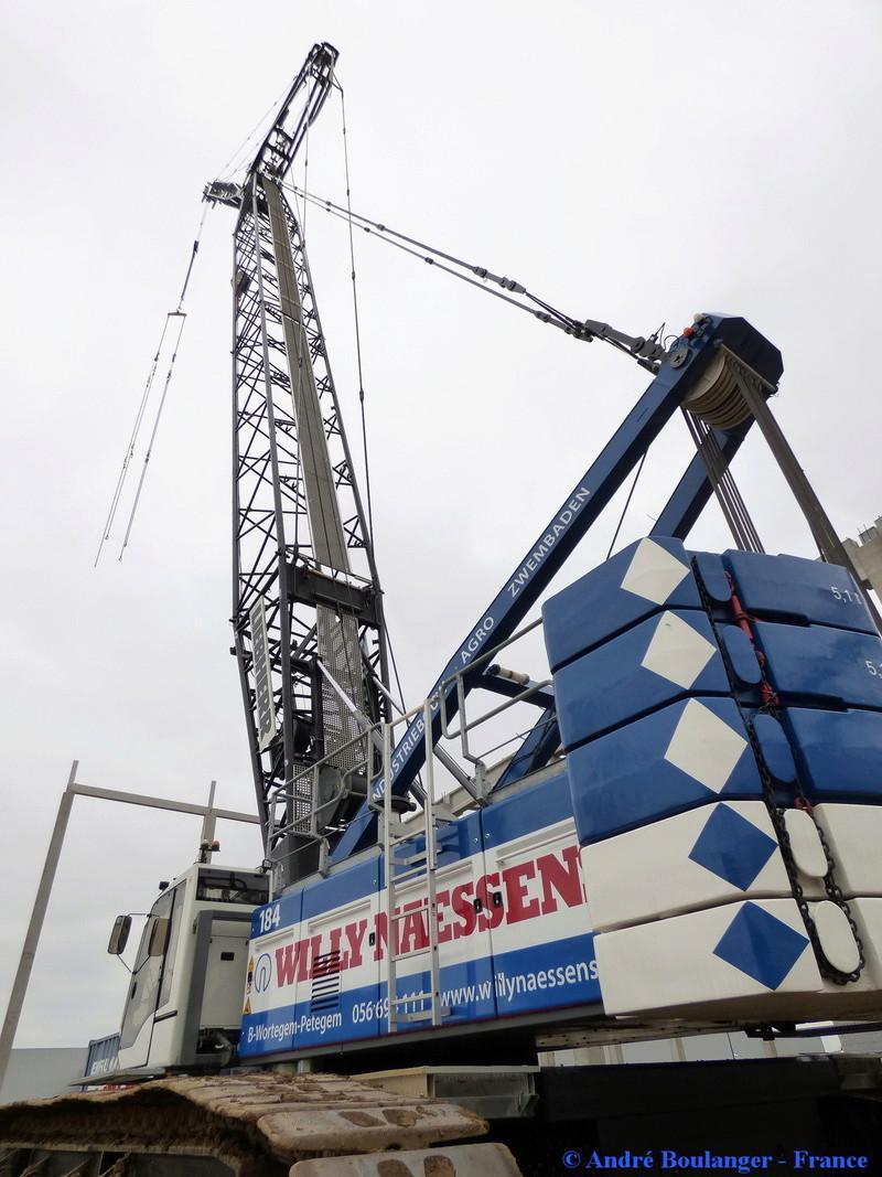 Les grues de WILLI NAESSENS (Belgique) P1080239