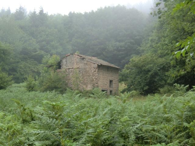 la petite maison dans ...... Cimg1110