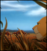 Lion King Dawn Qel12
