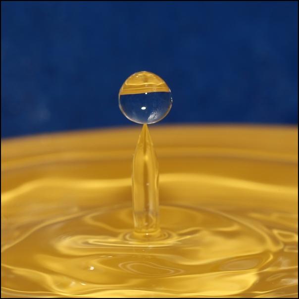 FIL ROUGE: Quelques gouttes d'eau pour un océan  - Page 17 Goutte18