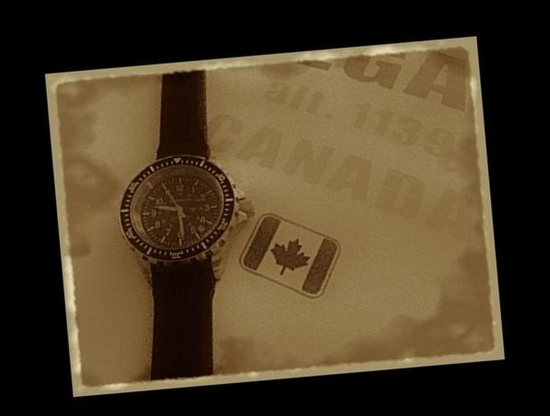 vostok - Votre montre du jour - Page 33 Gsar_c12