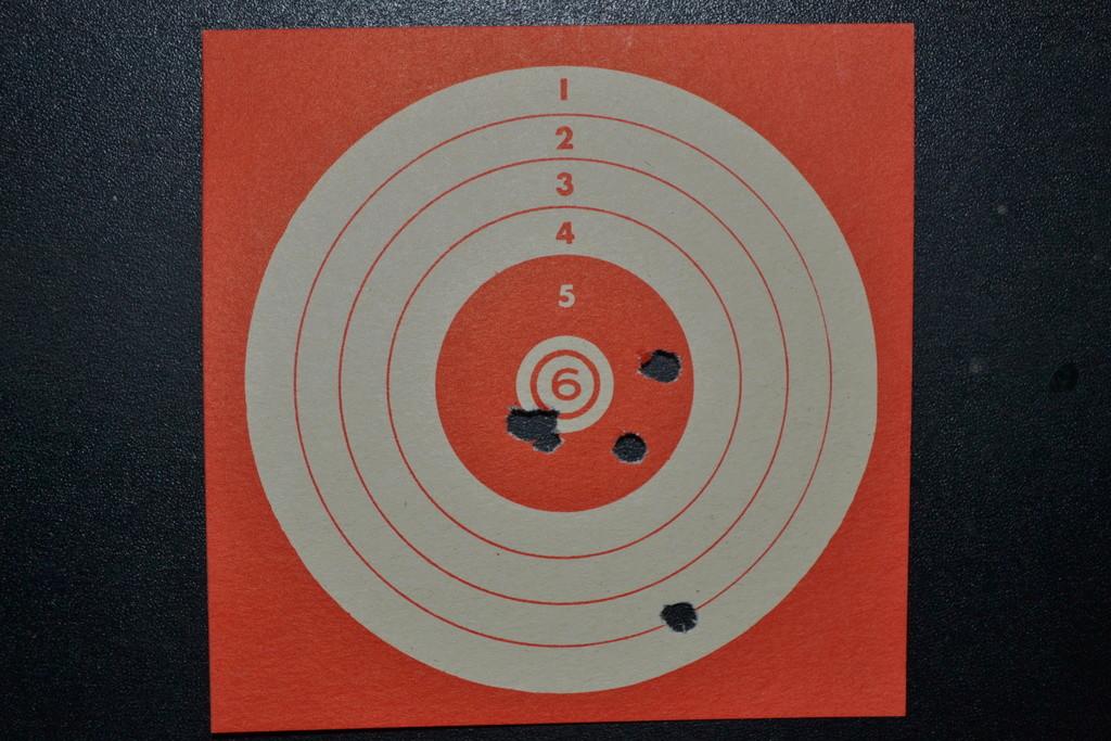 """Dan Wesson 6"""" 4.5mm diabolo/BBs CO2 Cible-11"""