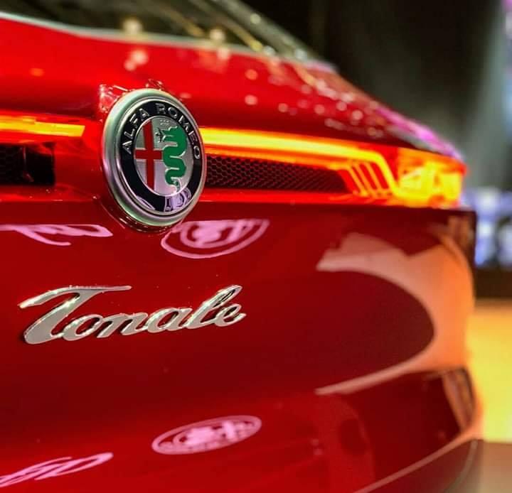 Tonale Concept 53782610
