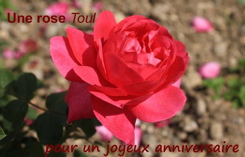 4 x 20 ans ! Rosera10