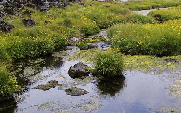 Islande - balade aux Iles Feroe Island52