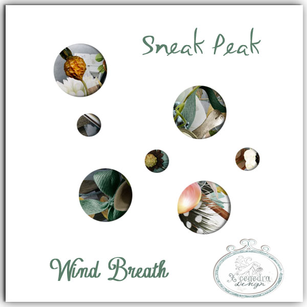 *** RAK WIND BREATH BY XCENEDRA *** (fin le 26/09) Rak210