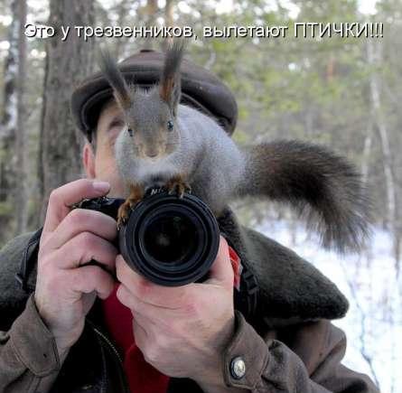 Забавные фотки и картинки 12889310