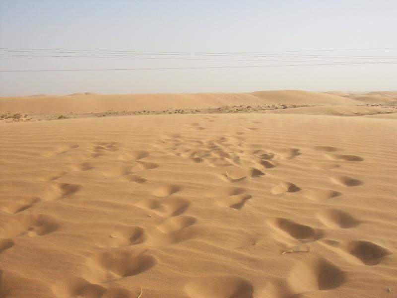 En route vers le sahara, avec ma Mercedes!  - Page 3 Img510