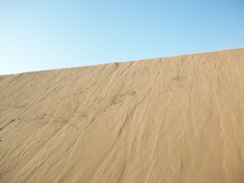 En route vers le sahara, avec ma Mercedes!  - Page 3 Img5110