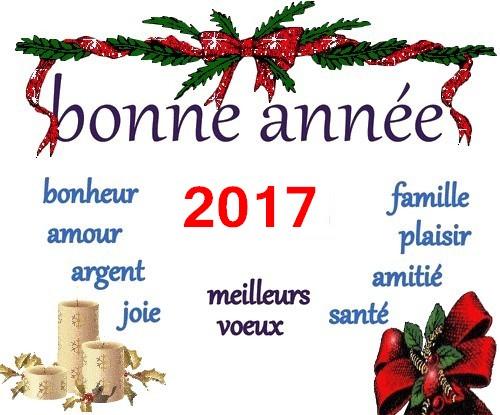 Bonne et Heureuse Année 2017 ! Sans_t24
