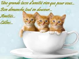 Bonjour...bonne journée...bonsoir...bonne nuit.... - Page 30 Images11