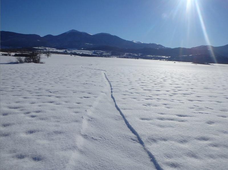 Snow ou snowkite Pyrénée EST Espeze10
