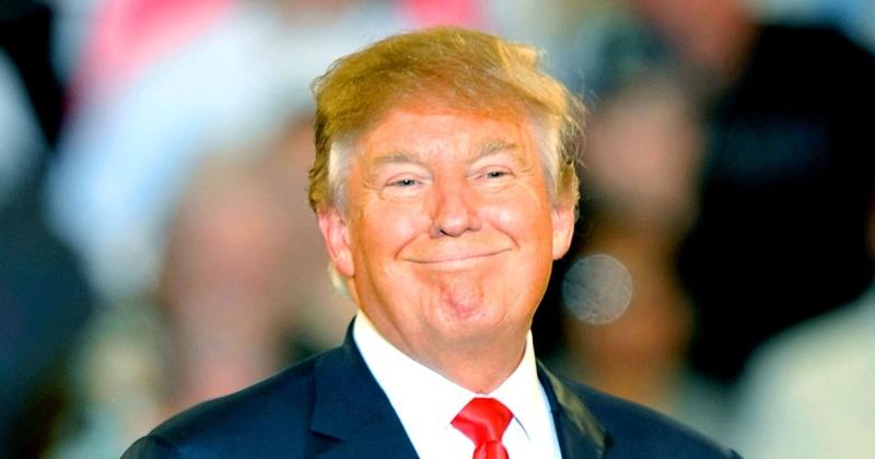 Sotto a chi tocca Donald10