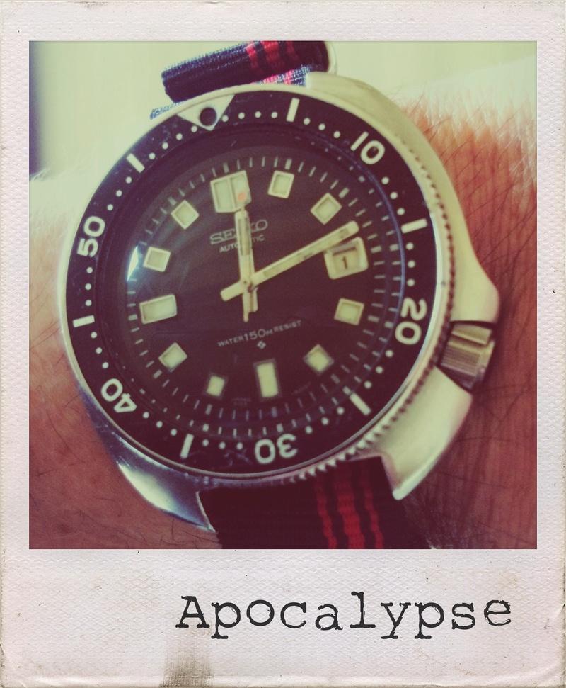 Votre montre du jour - Page 33 Polaro13
