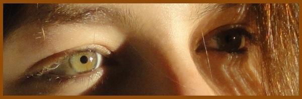 vos yeux! ( attention âmes sensibles: oeil en gros plan ^^) - Page 13 Dsc03610