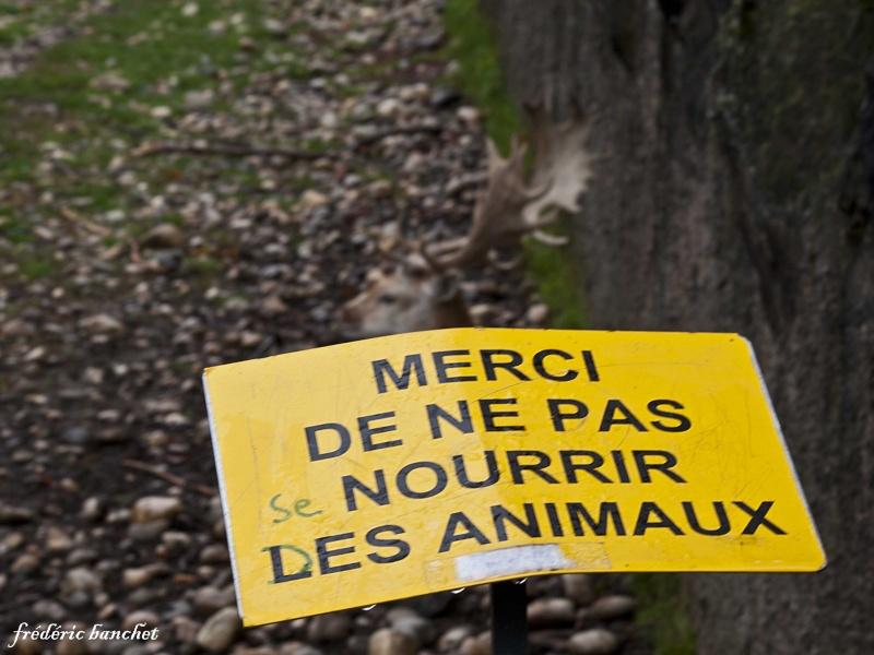 les lyonnais ont de l'humour Humour10