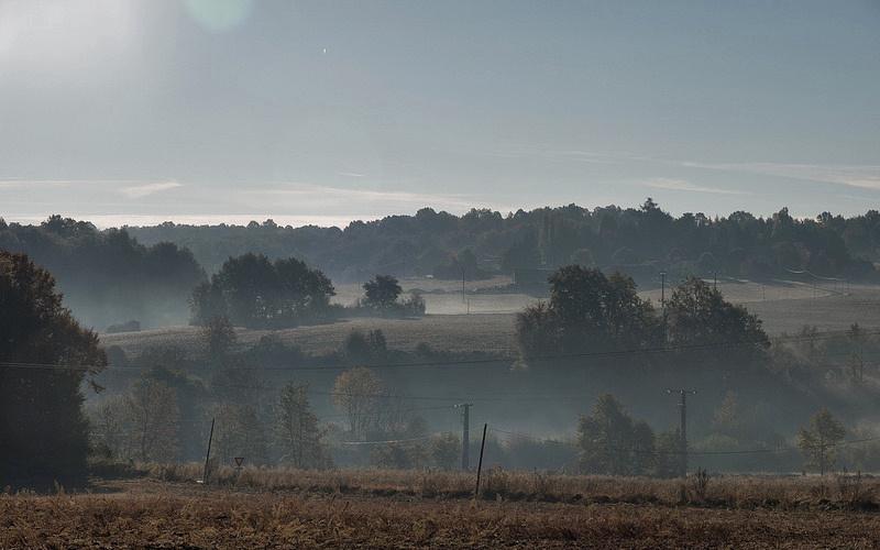 Un matin brumeux 30143910