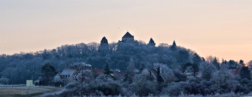St Bernard au matin Stbern11