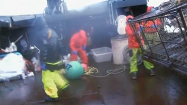 Jobmöglichkeit: Krabbenfischer in der Beringsee mit 100.000.- $ innerhalb von 4 Monaten Decksj10