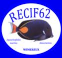 RECIF62