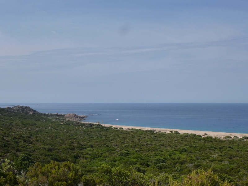 Corsica 2012 P1000510