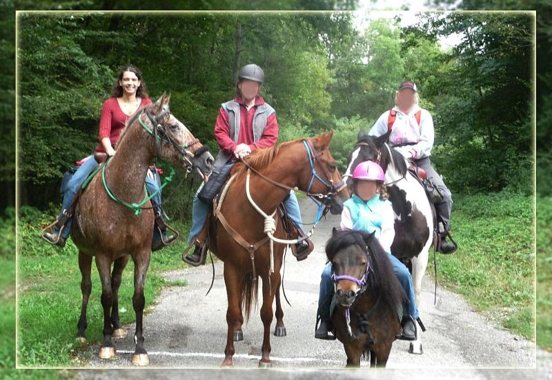 Fil sur les équidés (chevaux, ânes, mules) - Page 4 P1090410