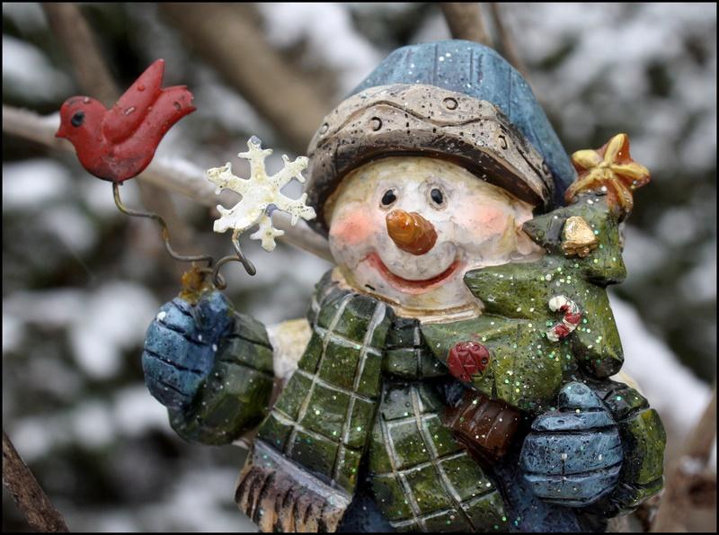Joyeuses Fêtes à tous ! C_02710
