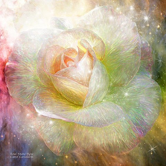 Le doux parfum des roses - Page 5 2abec810